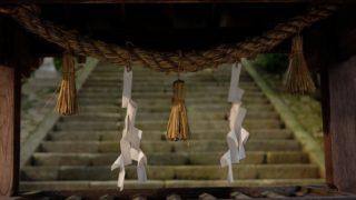 神式の通夜は仏式とやり方が異なる?玉串奉奠(たまぐしほうてん)とはいったい何?