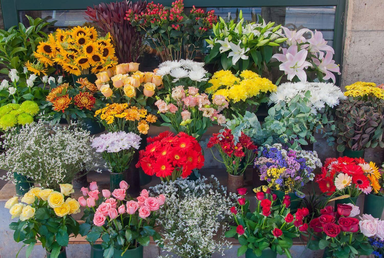 開店・開業祝いに贈ると喜ばれる花とは